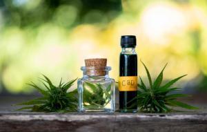 CBD As Preventive Medicine