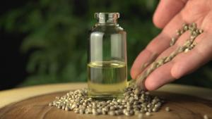Use Of CBD Oil